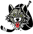 Chicago Wolves Hockey Team
