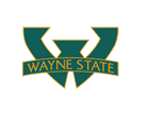 Wayne State University, Football Team